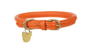 Digby & Fox Rolled Leather  Dog Collar In Orange  X Small - Large