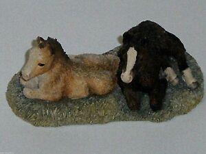 BORDER FINE ARTS,  SPRING ARRIVALS,1996. Shetland and Cob Ponies, Original, Rare