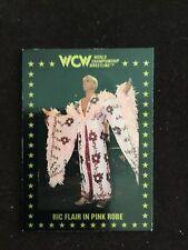 1991 Championship Marketing WCW Wrestling Ric Flair 6 Time World Champ Card #73