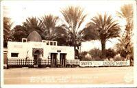 Postcard Date Gardens Near Indio Cal