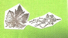 Leaves leaf rubber stamp lot branch nature cling back art journaling stamping