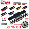 GYM BACK PULL UP CHIN DIPPING DIP BODY BUILDING WORKOUT WEIGHT LIFTING BELT