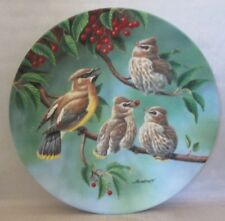 The Morning Harvest Collector Plate by Joe Thornbrugh Backyard Harmony