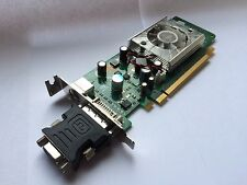SFF HP 445743-001 445681-001 GeForce 8400gs 256mb PCIe DVI TV con adattatore VGA