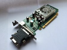 SFF HP 445743-001 445681-001 GeForce 8400gs 256mb PCIe DVI TV con VGA adaptador