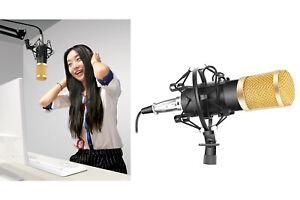 Microfono professionale condensatore supporto tappo schiuma registrazione E-451