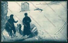 Aosta Piccolo San Bernardo Cane cartolina QQ6097
