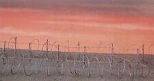 Pegasus Hobbies 28mm Barbed Wire # 6520##