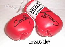Autographed Mini Boxing Gloves Sugar Ray Robinson (highly collectable)