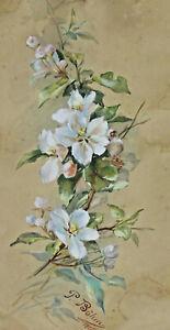 Signed P Böhm Dated 1896 - Apfelblüten