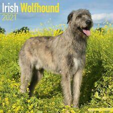 Irish Wolfhound Calendar 2021 Premium Dog Breed Calendars
