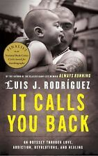 It Calls You Back: An Odyssey through Love, Addiction, Revolutions, and Healing,