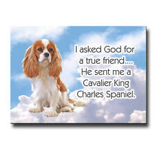 CAVALIER KING CHARLES SPANIEL True Friend From God FRIDGE MAGNET No 2