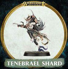 Warhammer Quest Silver Tower Tenebrael Shard Dark Elf Assassin Age of Sigmar