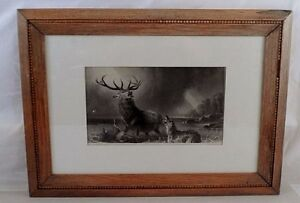 Wood Bead Framed Antique Victorian Charles Mottram Engraving Stag at Bay Wolves