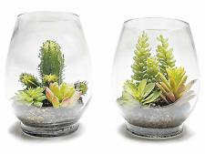 Composizione di succulente / piante grasse artificiali in vaso di vetro 2PZ
