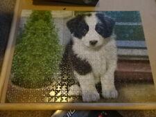 PUZZLE WORLD LITTLE COLLIE PUPPY   Jigsaw Puzzle 500 pieces 35x48 cms
