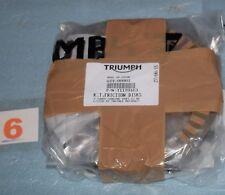 9 disques d'embrayage GARNIS TRIUMPH DAYTONA 675 STREET TRIPLE R TIGER 800 neuf