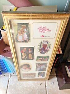 Multi-picture frame