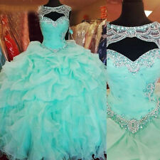 Plus Size Quinceanera Dresses Beading Ball Gown 2018 Sweet 16 Dresses Custom