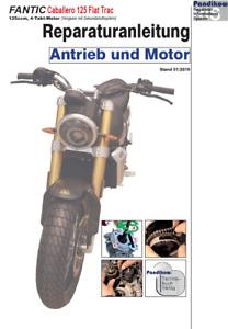 Reparaturanleitung RIS Fantic Caballero Flat Trac 125, Antieb und Motor