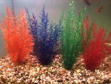 Aqurium Plant 24 X Natural Fern 7 Inch Bright Colourful Decoration Leaded