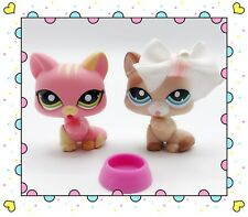❤️Authentic Littlest Pet Shop PAW LICKING CAT LOT #1562 #1363 With Accessories❤️