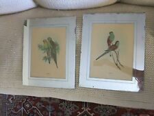 Pair of 2 Antique Art Deco Mirrored Mats w/ J. Gould Parakeet Prints