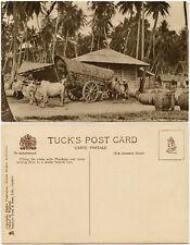 CEYLON Govt. 1925 WEMBLEY BRITISH EMPIRE EXHIBITION PLUMBAGO BULLOCK CART Tucks