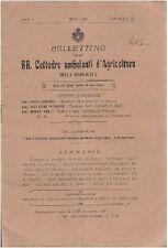 BOLLETTINO RR. CATTEDRE AMBULANTI AGRICOLTURA DELLA BASILICATA - 1910 A. II n. 3