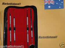 Dental Kit Stainless Professional Dentist Leather Case Probe Set Hygiene 4Pcs