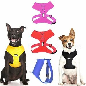 Dexil Eilte Padded Soft Vest Dog Harness Adjustable Waterproof Non Pull