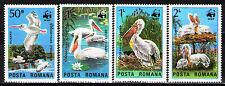 Romania 1984 Sc3232-35 Mi4104-07 4v  mnh  Pelicans of the Danube Delta