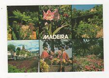 Flores de Madeira Postcard 578a