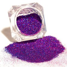 Chic Purple Starry Holographic Laser Powder Holo Nail Art Tips Manicure Glitters