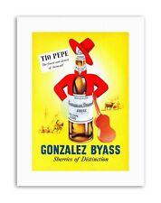 DRINK ALCOHOL SHERRY BOTTLE GUITAR SPAIN Poster Canvas art Prints