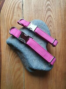 Hot Pink Adjustable Collar- Medium