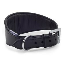 Ancol Whippet Padded Leather Collar 35 Cm Black