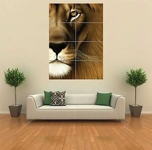 MALE LION NEW GIANT POSTER WALL ART PRINT PICTURE G779