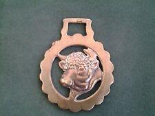 Horse Brass Bull