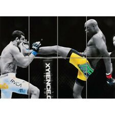 Anderson Silva UFC Kick Giant Wall Mural Art Poster Print 47x33 Inches