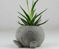 Concrete Oddish Planter, Air Plant Holder, Succulent Planter, Pokemon Planter