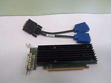 NVIDIA Quadro NVS 290 (43R1765) 256MB DDR2 SDRAM PCI Express x16 Graphics