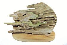 Rick Cain Dragon Chameleon Original Mythological Fantasy Cypress Sculpture