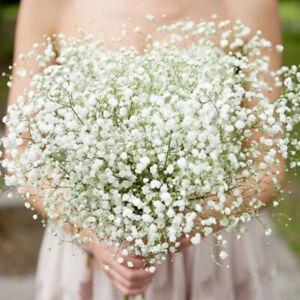 Artificial Silk Gypsophila Baby's Breath Flower Wedding Bouquet Party Home Decor