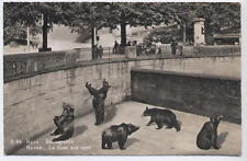 Inter-war? Swiss Postcard  Bern Bear Pit by A Boss & Co Schönbühl in B&W Mint