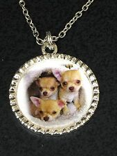 """Dog Chihuahua Trio Charm Tibetan Silver with 18"""" Necklace A59 BIN"""