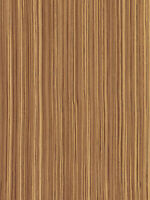 "Exotic Curly Maple Tiger Medium Figured Wood Veneer Paper Back 2/' X 8/' 24/"" x 96/"""