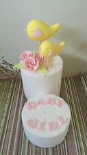 Edible Mummy Bird Baby Bird Toppers Roses Letters For Baby Shower Cake