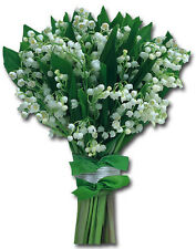 Lily Of The Valley Die Cut Blank Card - Greeting Card by Paper House Productions